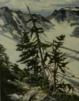 whistler mountain in summer #4