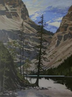 view from kinney lake - mt. robson prov. pk. SOLD