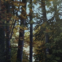 forest drapped in fall colour SOLD
