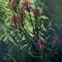 indian paintbrush in the forest shadow SOLD