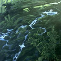 trickling stream below buntzen lake